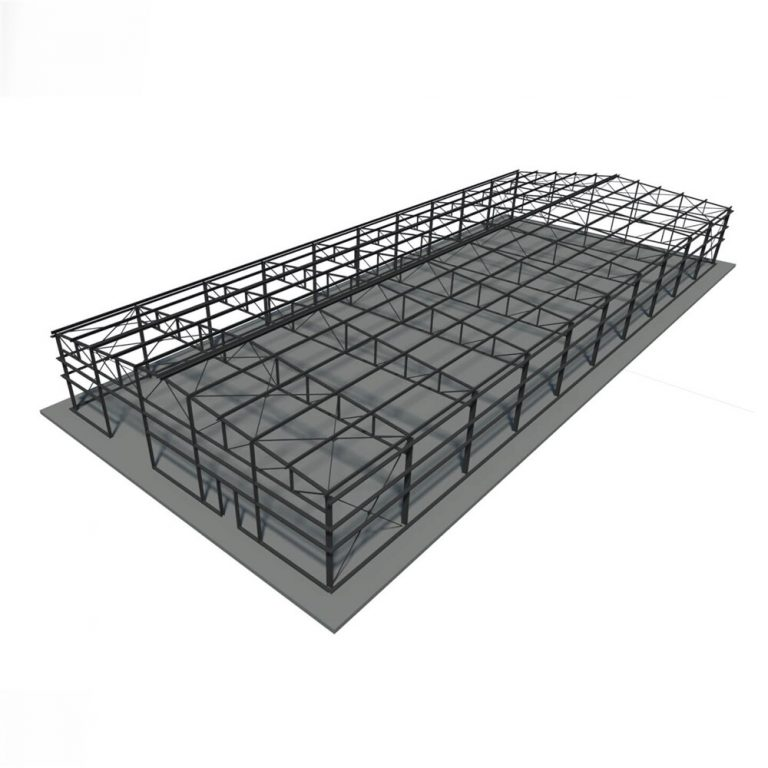 50 X 100 Steel structure building for sale