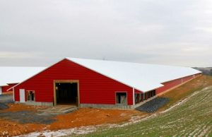 Examples of AG buildings